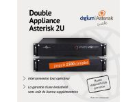 Double Appliance Asterisk 2 X 2U -1500 Comptes - Haute disponibilité